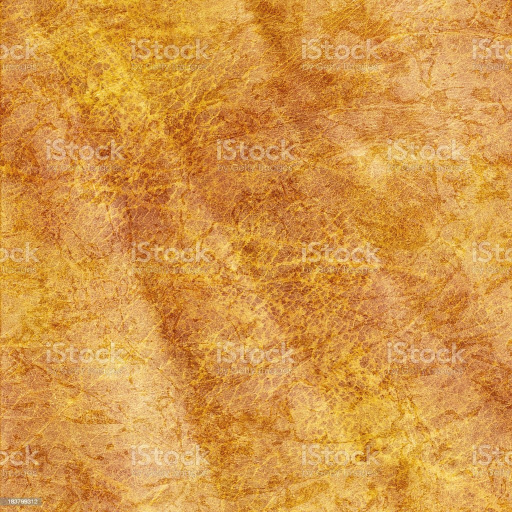 High Resolution Antique Animal Skin Parchment Wrinkled Wizened Grunge Texture royalty-free stock photo