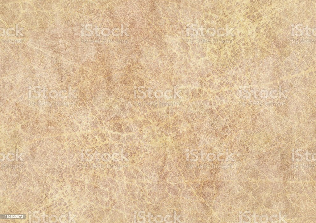 High Resolution Antique Parchment Grunge Texture royalty-free stock photo