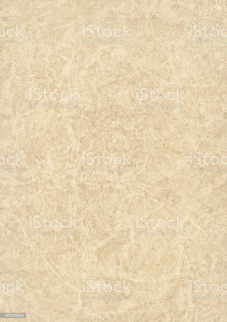 High Resolution Beige Antique Animal Skin Parchment Grunge Texture stock photo