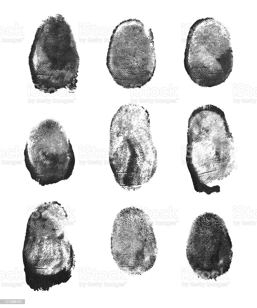 High Resolution Fingerprint Scan royalty-free stock photo