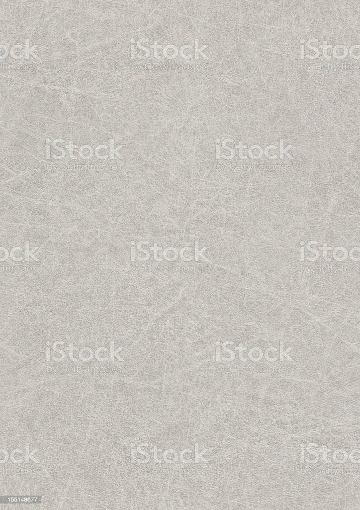 High Resolution Gray Antique Animal Skin Parchment Grunge Texture royalty-free stock photo