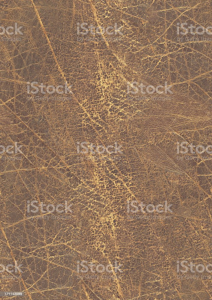 High Resolution Old Cowhide Seamless Grunge Texture Tile royalty-free stock photo