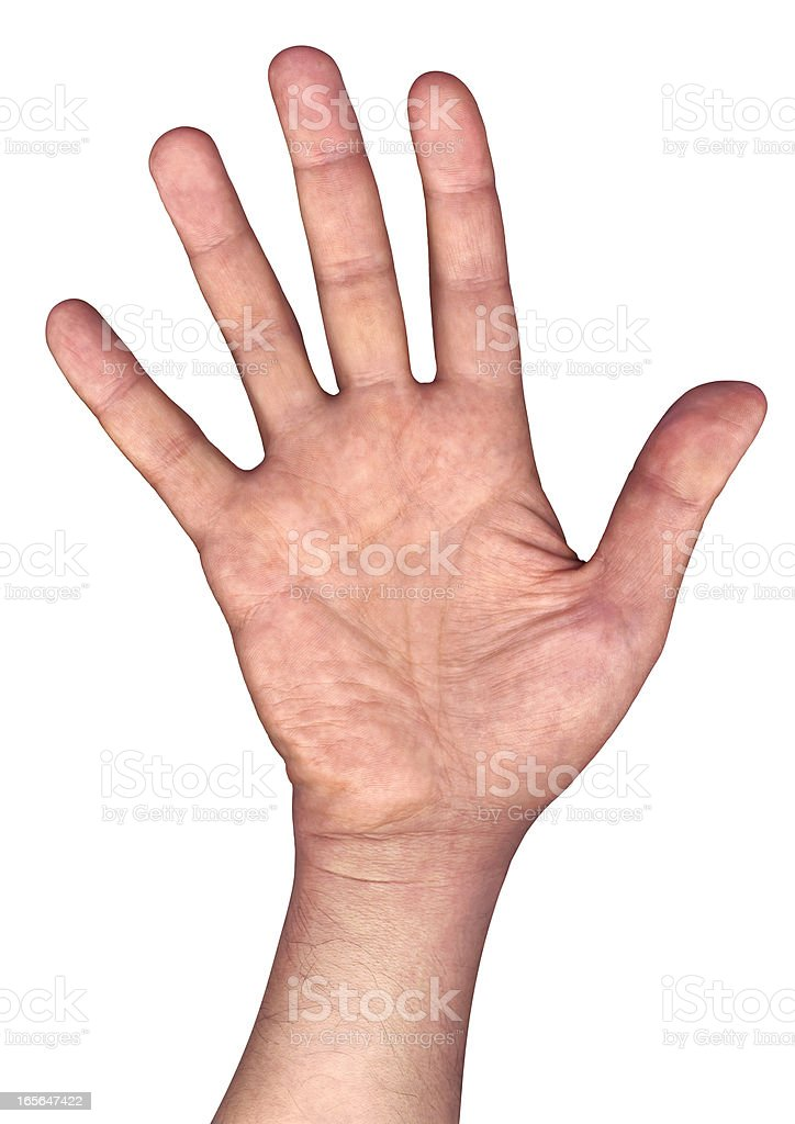 High Resolution Open Human Hand Palm Isolated On White Background stock photo