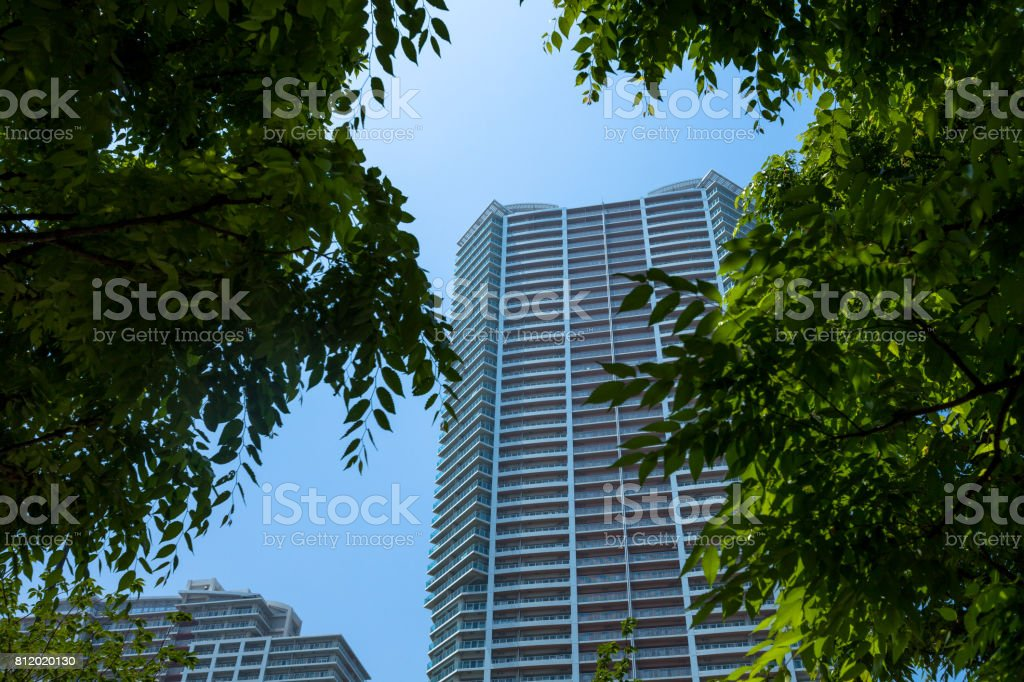 High rise apartment house and green. stock photo