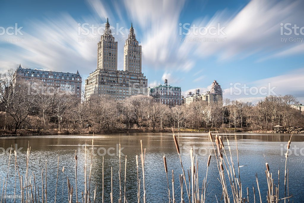 High rise buildings around Central Park with blurry foreground stock photo