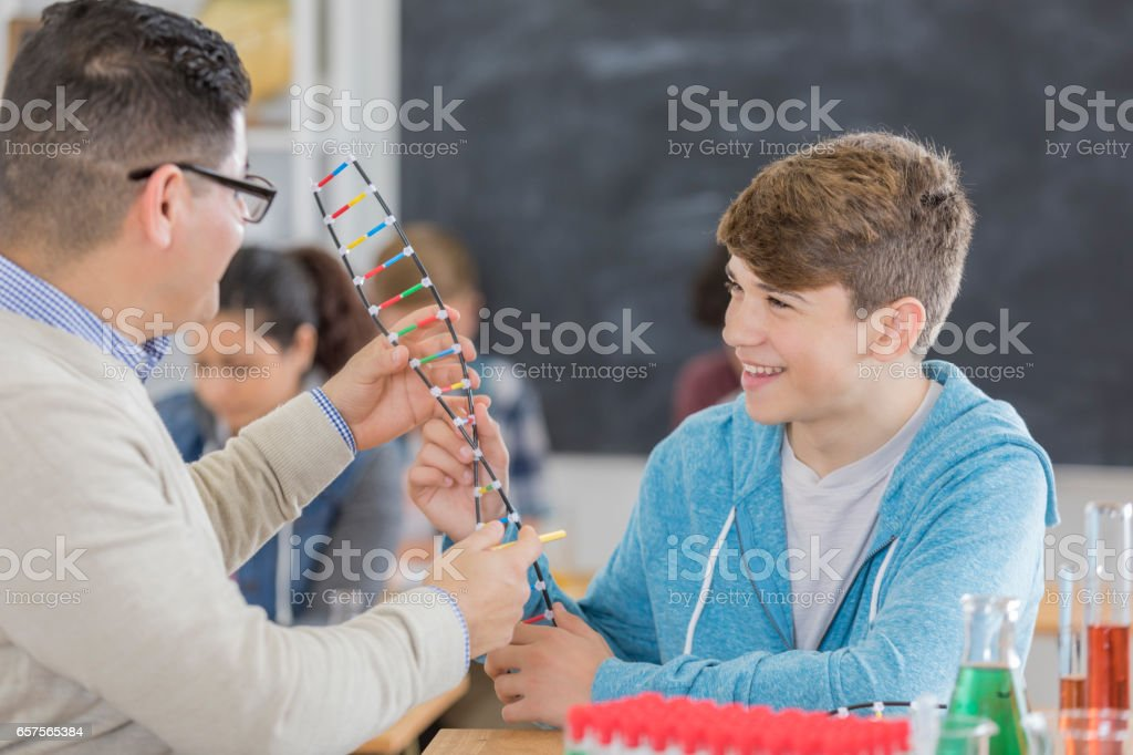 High school science teacher uses DNA model in class stock photo