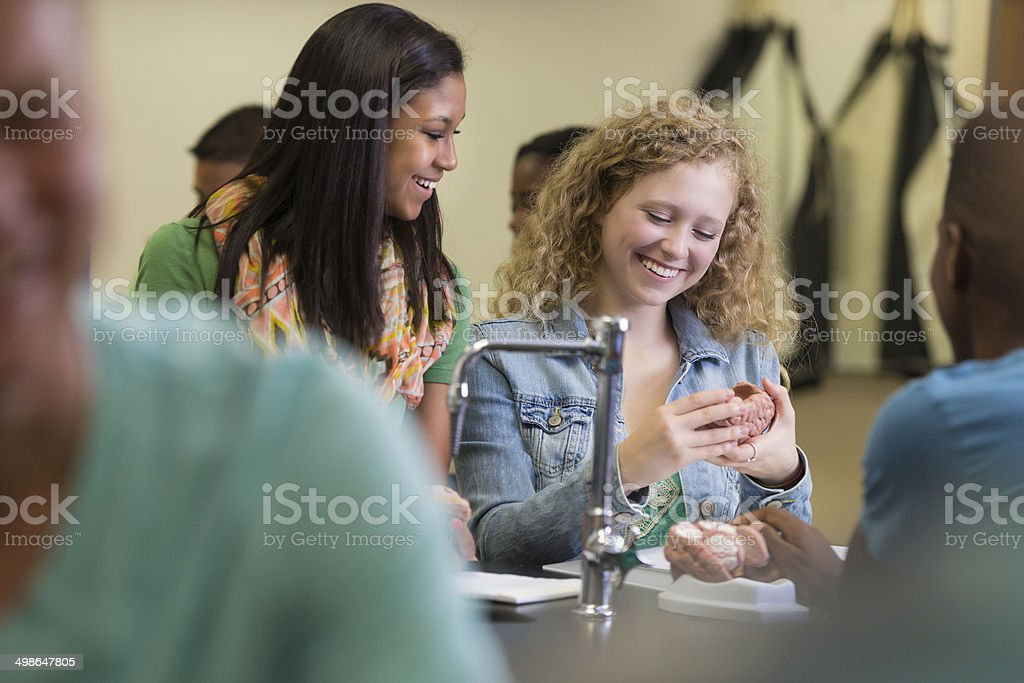 High school students studying model in science classroom royalty-free stock photo