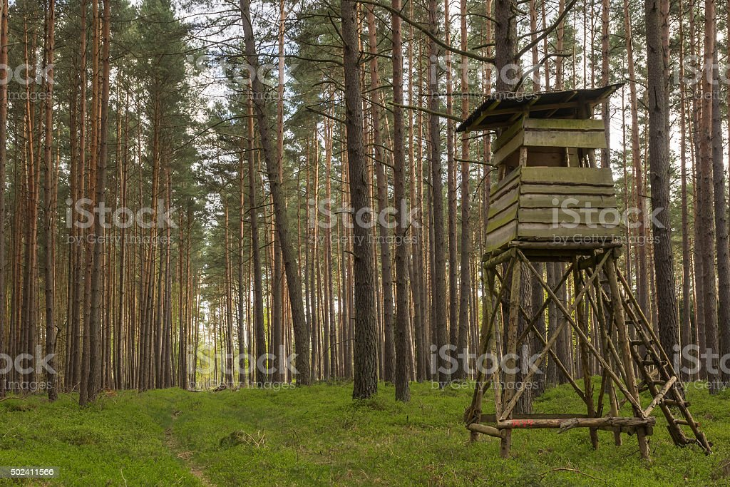 high seat at the edge of a forest stock photo