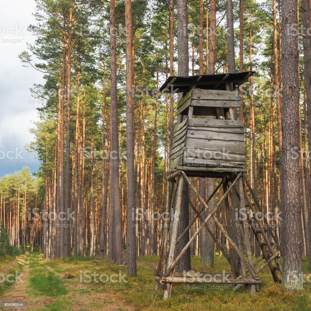High seat for hunting in a forest in Germany stock photo