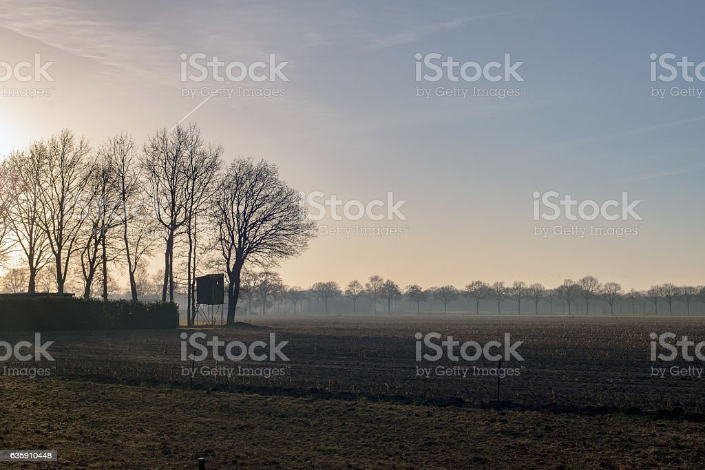 High seat for hunting on misty farmland. stock photo