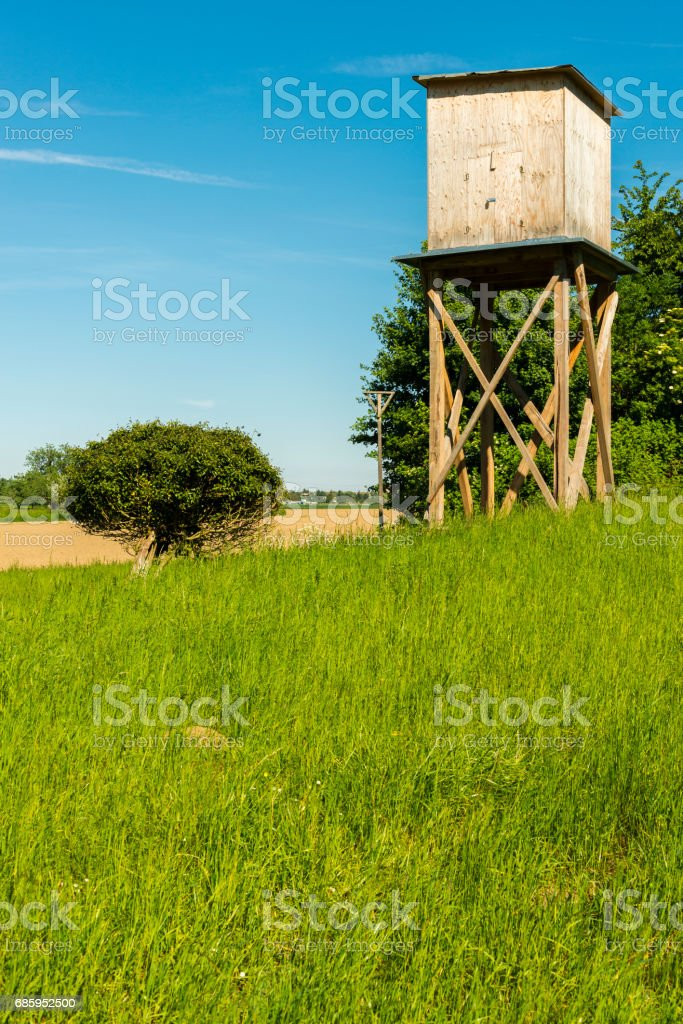 high seat in summer stock photo
