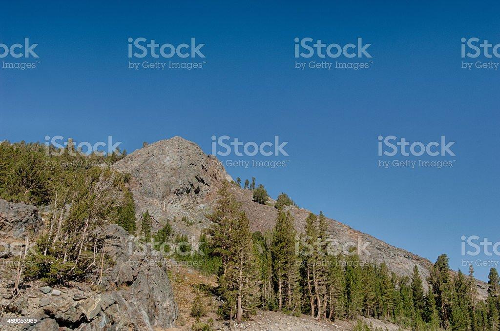 High Sierra Road Passing Passing Through Yosmite stock photo