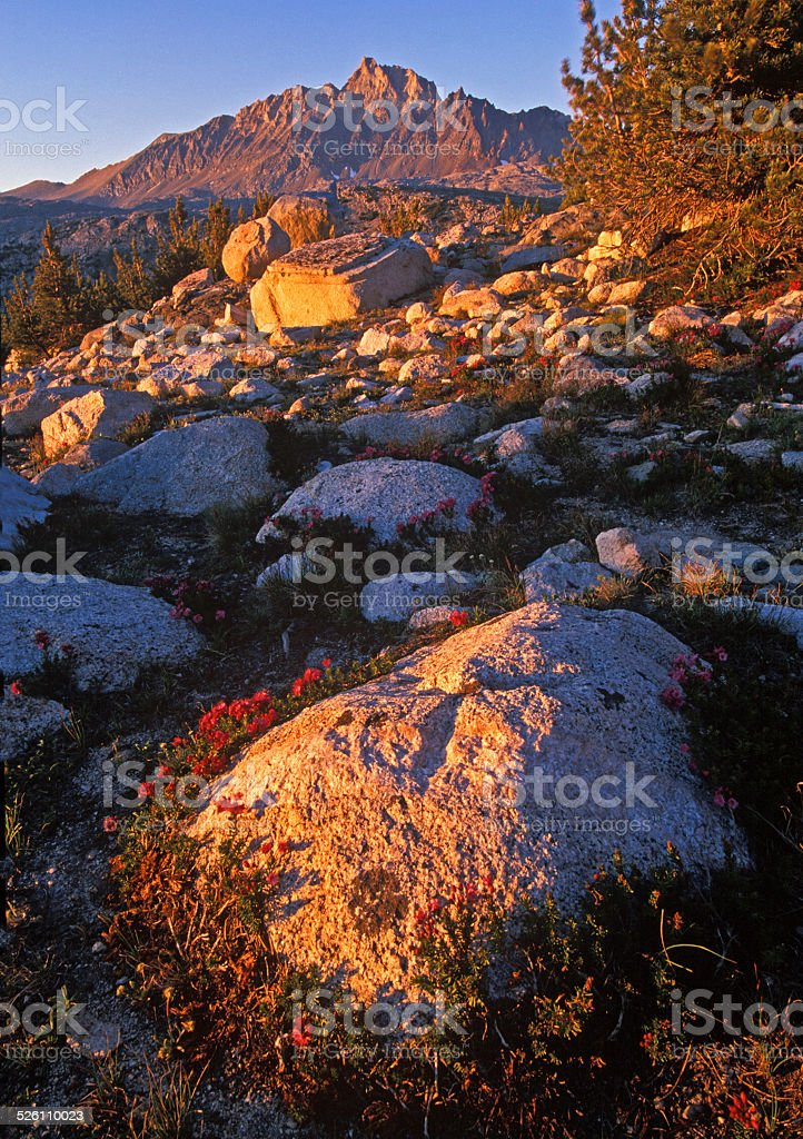 High Sierra View stock photo