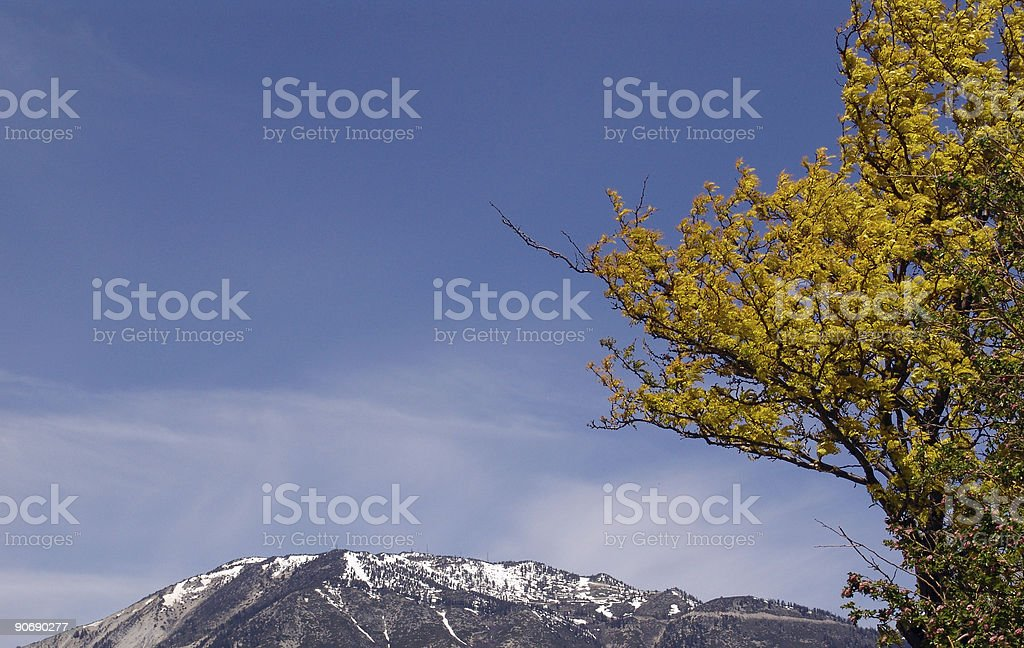 High Sierras Spring royalty-free stock photo