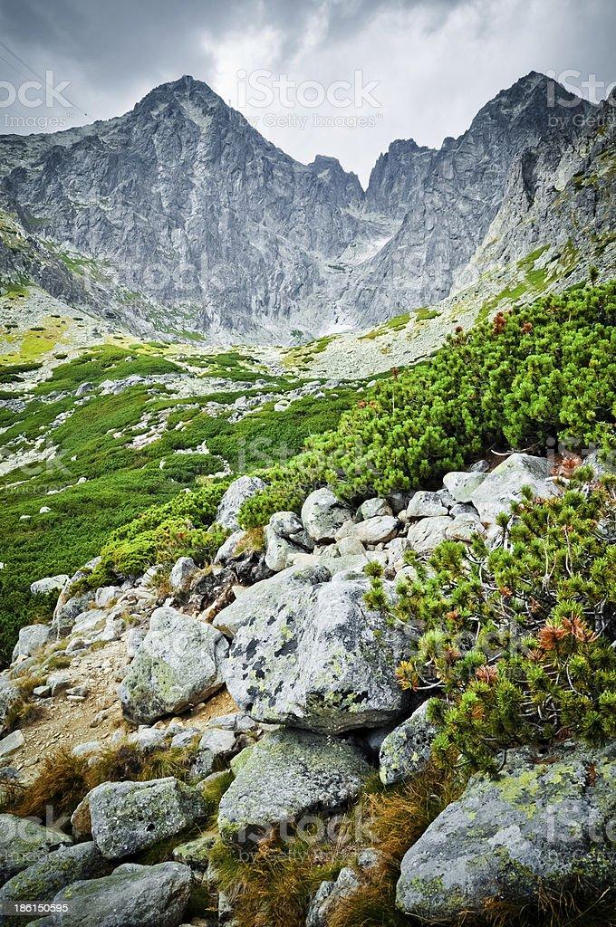Hohe Tatra-Gebirge und Blick auf Lizenzfreies stock-foto