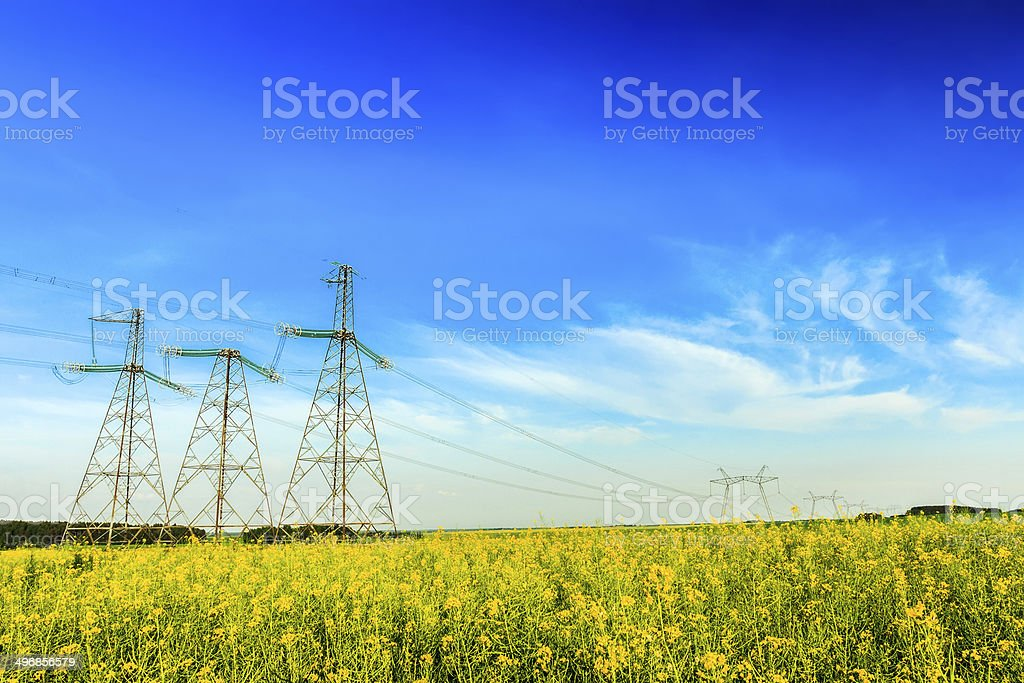 High voltage energetic powerline with canola field and blue sky stock photo