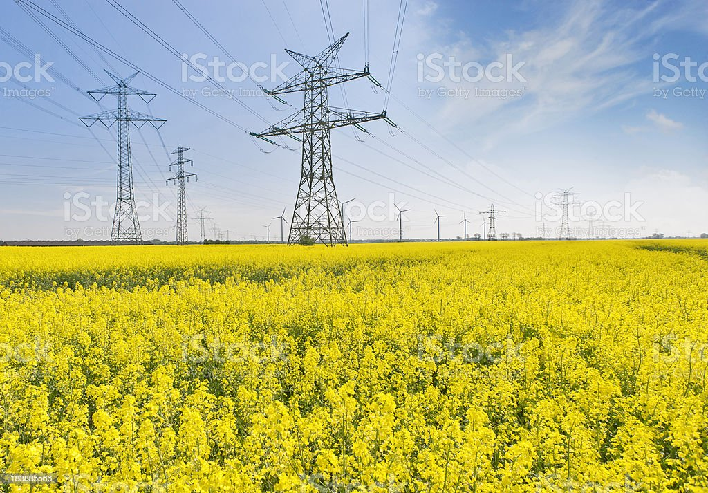 High voltage power line royalty-free stock photo