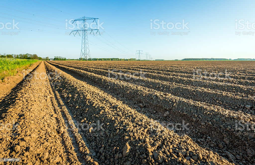 High voltage pylons in an agricultural landscape in the Netherla stock photo