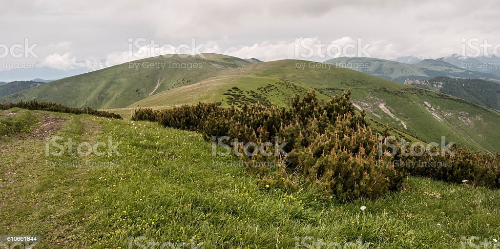 highest part of Velka Fatra mountain range in Slovakia stock photo