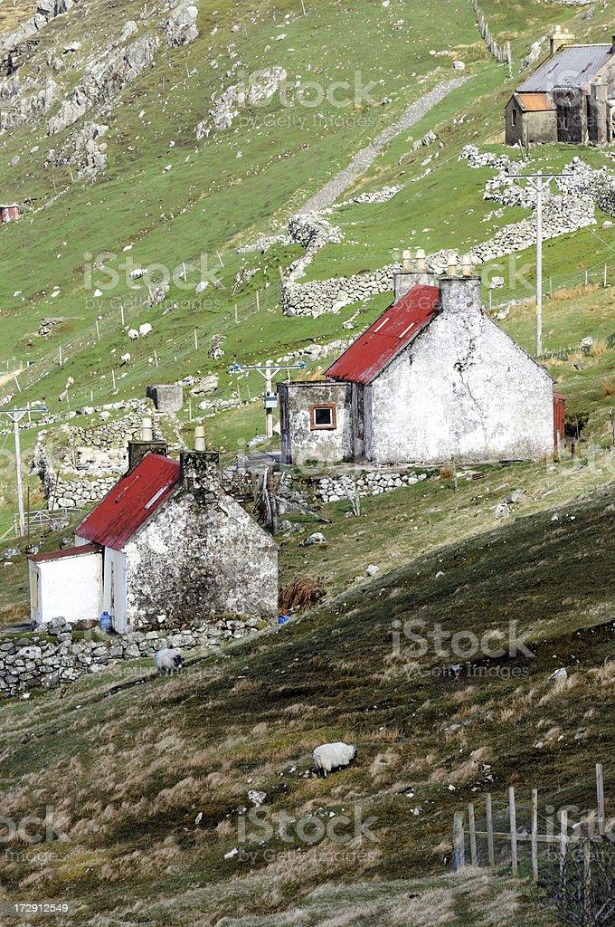 Highland Crofts royalty-free stock photo