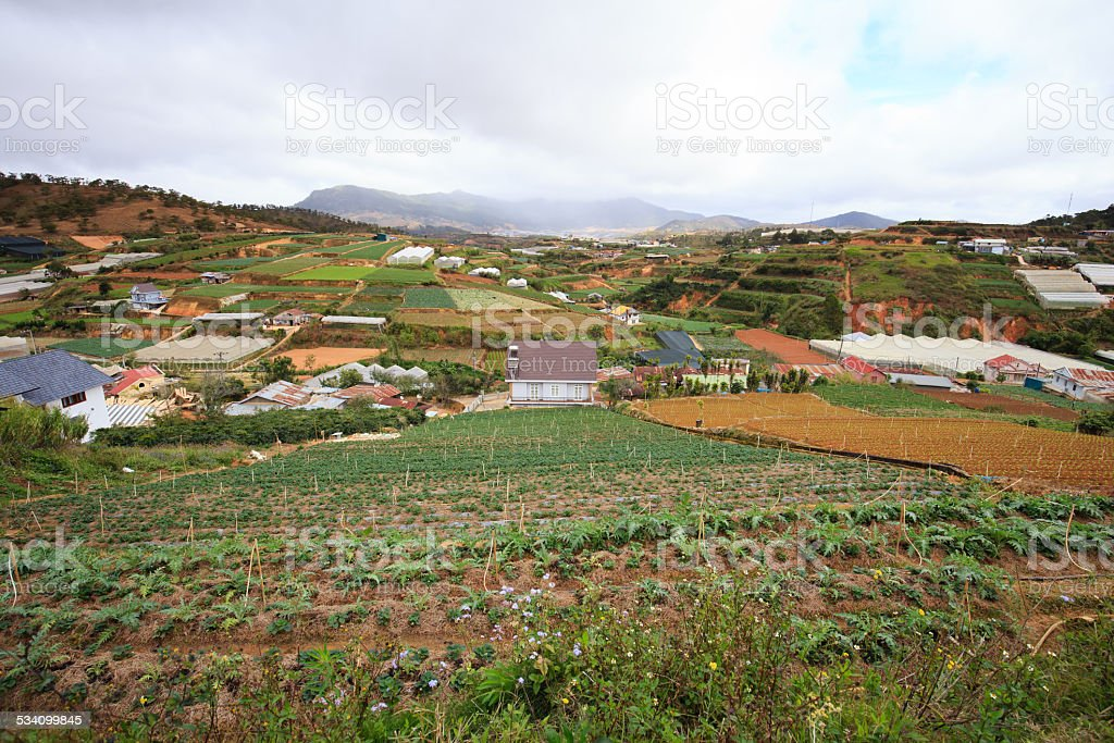 Highland house in DaLat City, with strawberry garden. Tourist royalty-free stock photo