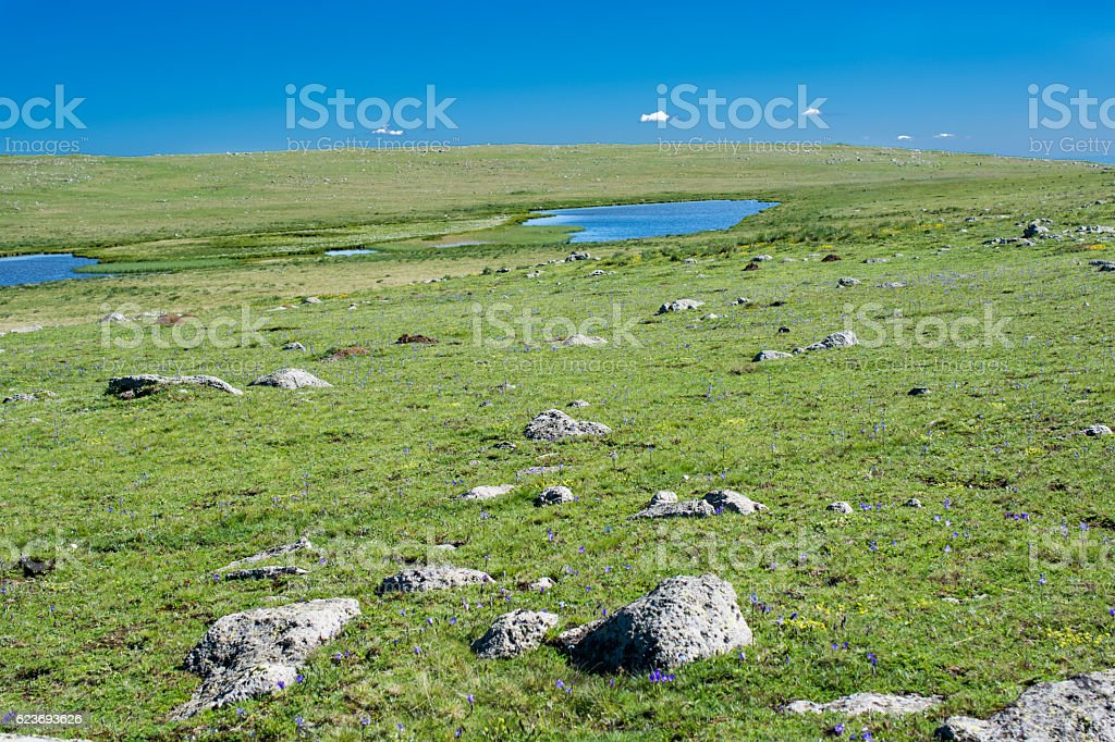 Highland lake in green natural background in Artvin stock photo
