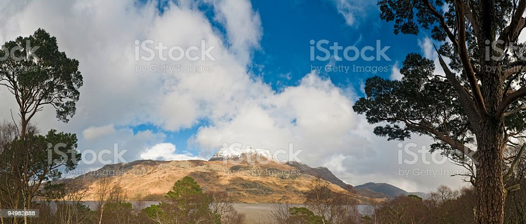 Highland pines and peaks stock photo