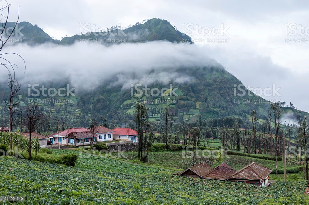 Highland village in Bromo stock photo