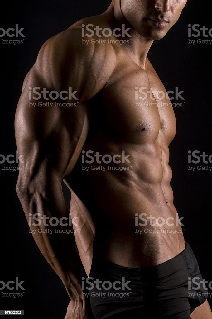 High-resolution photo of a muscular male torso royalty-free stock photo