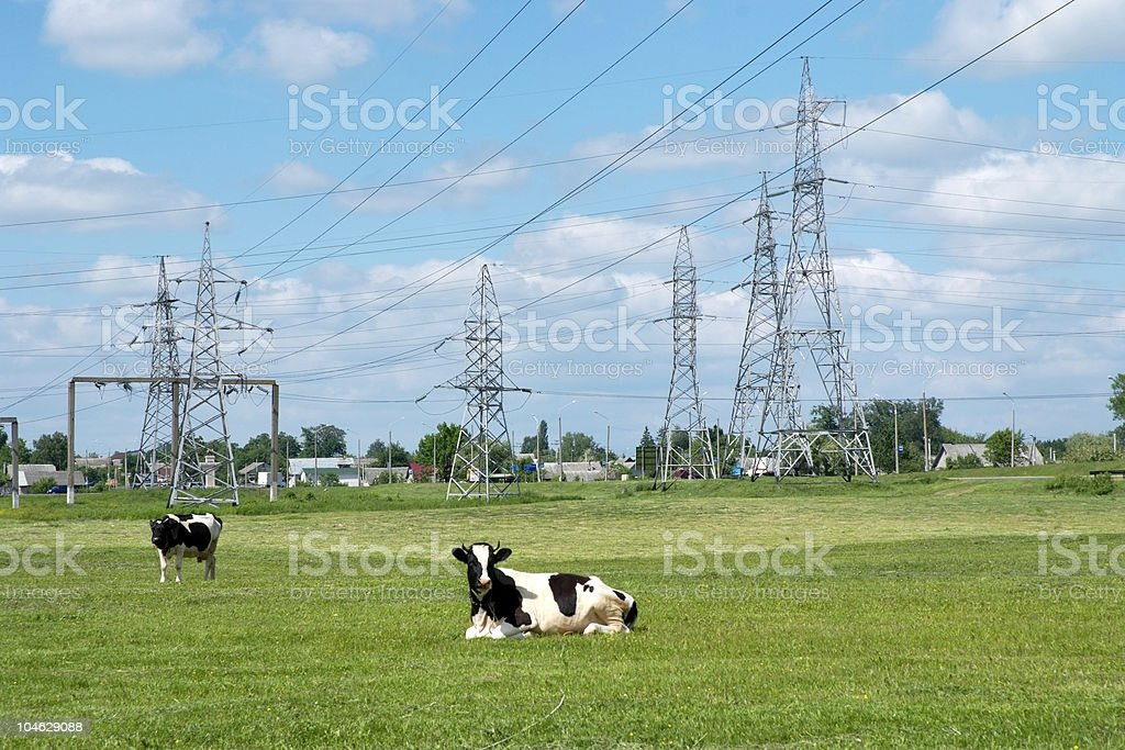 High-voltage electricity line royalty-free stock photo