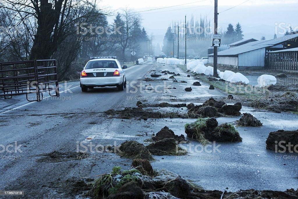 Highway and Police After a Natural Disaster stock photo