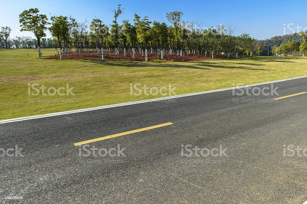 highway beside woods royalty-free stock photo