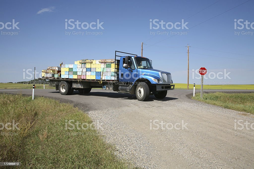 Highway In The Country With Truck Carrying Bee Boxes royalty-free stock photo