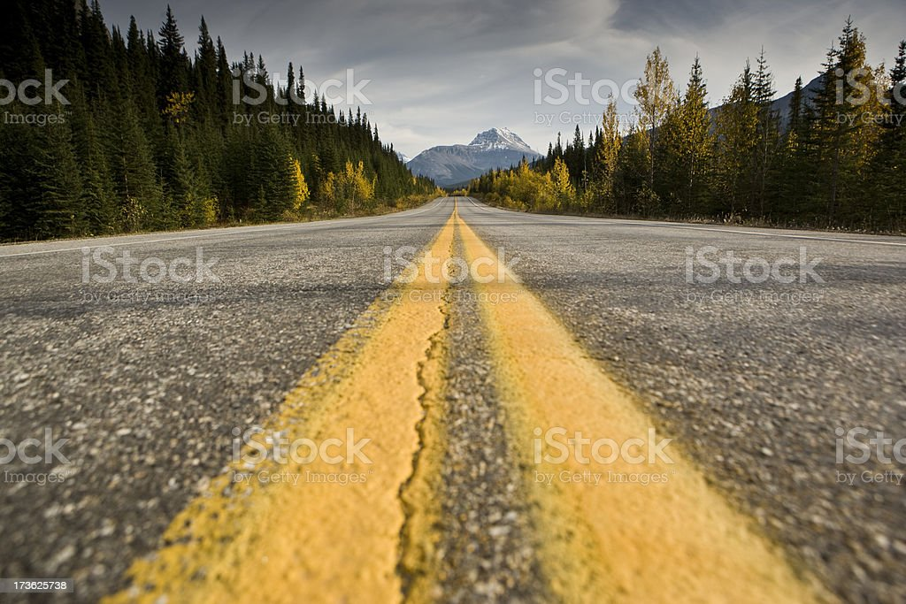 Highway into nature royalty-free stock photo