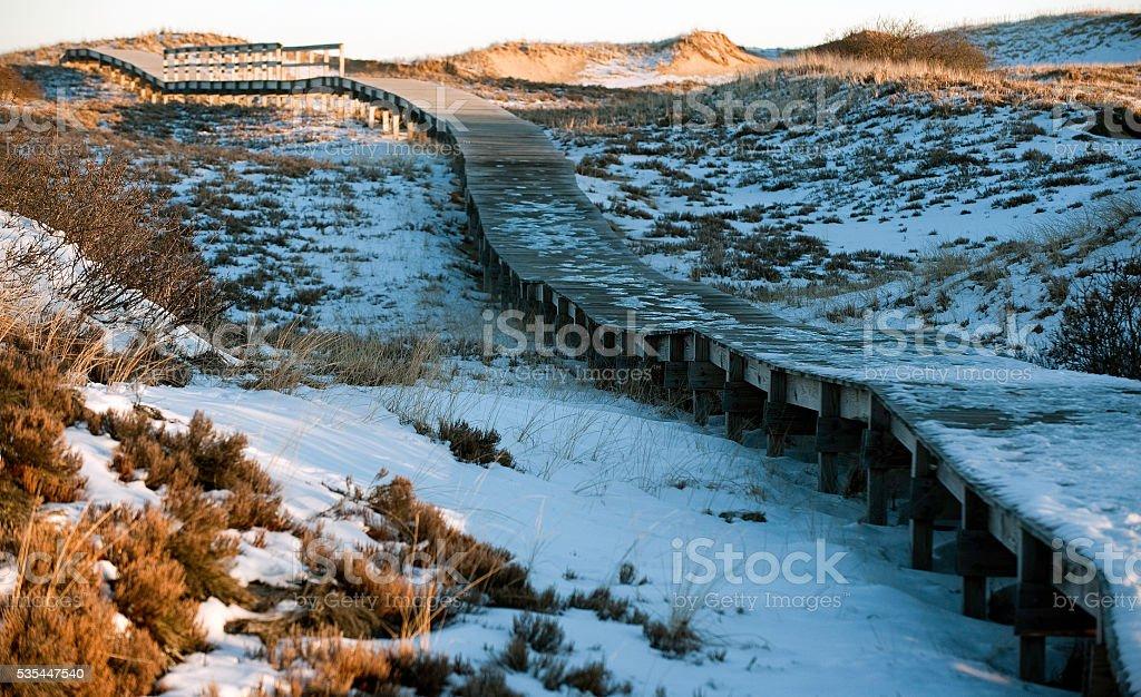 Highway over the dunes stock photo
