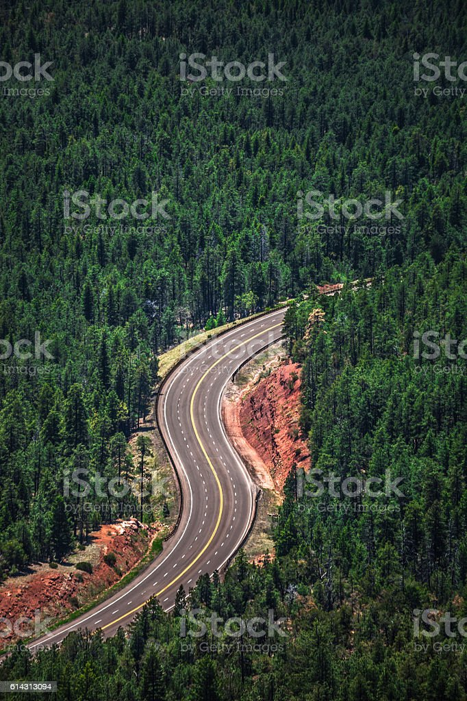 Highway through forest, Arizona. stock photo