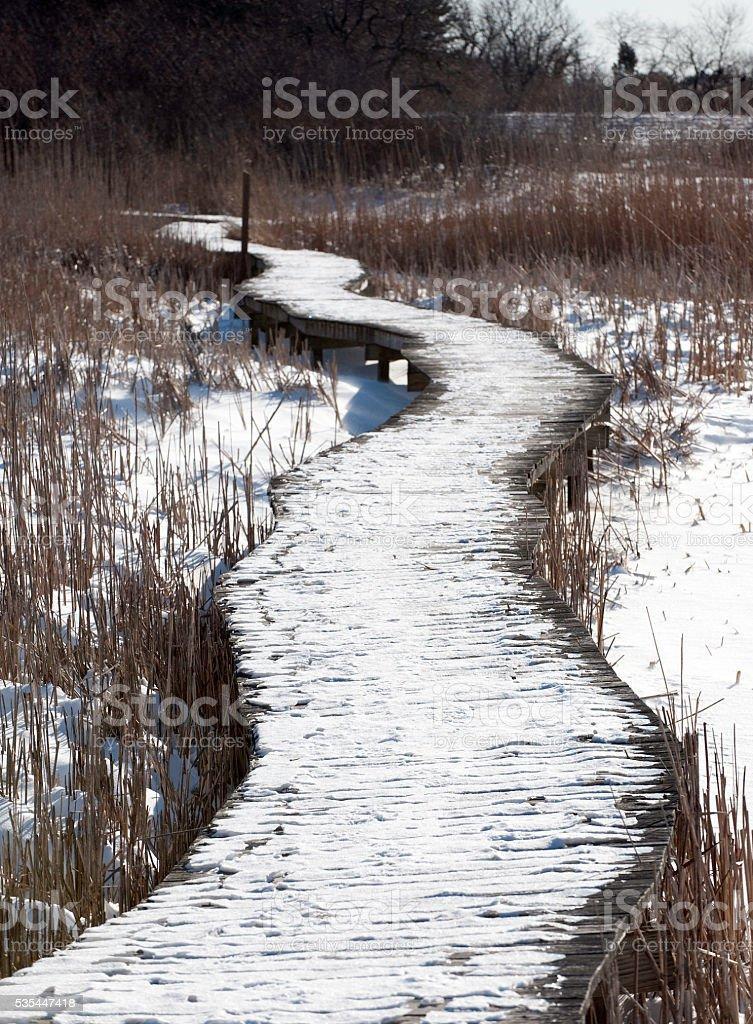 Highway through the marsh stock photo