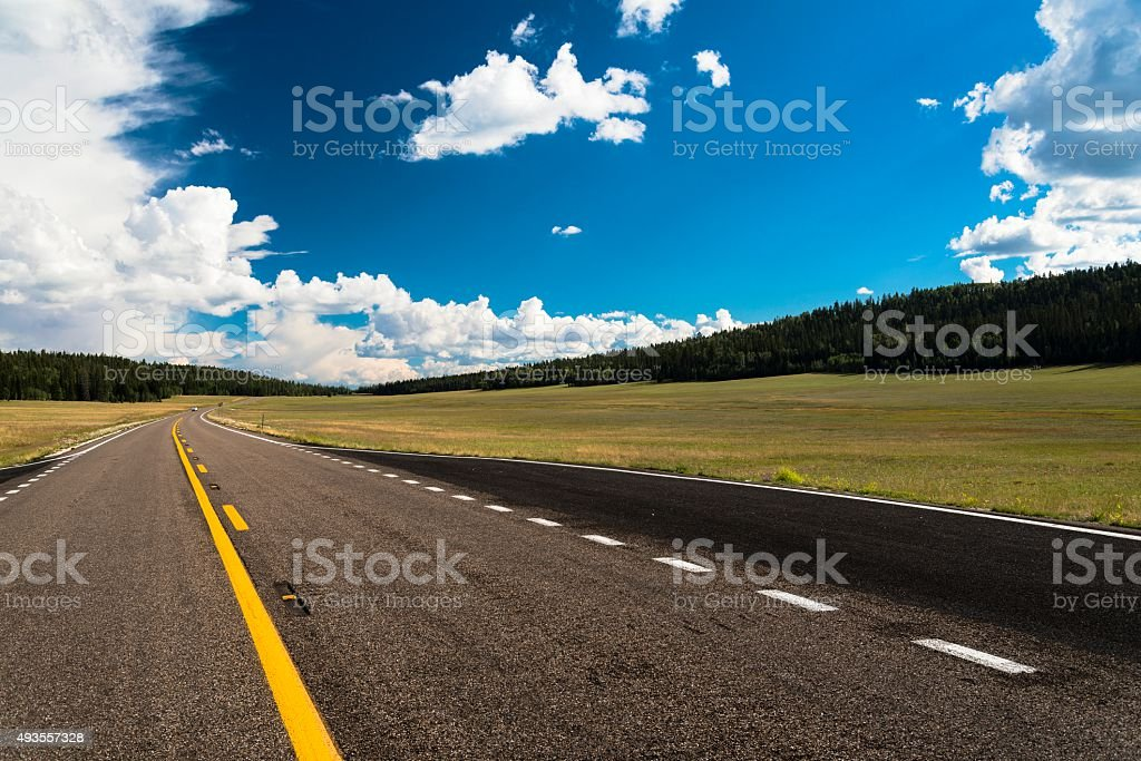 Highway  With Pines in Northern Arizona stock photo