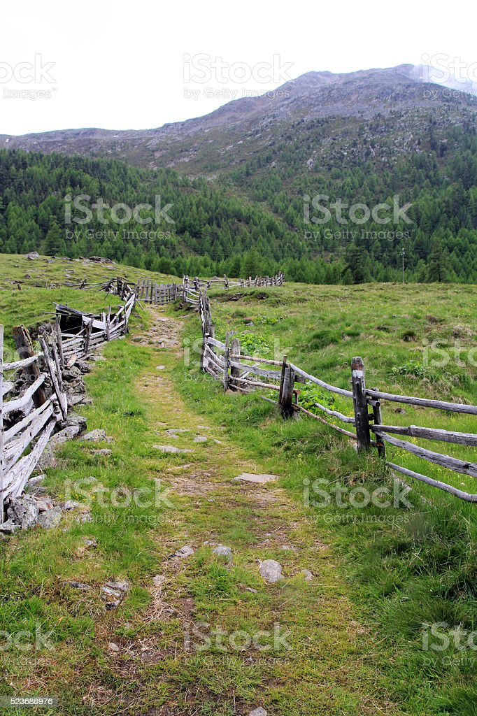 Hike in the mountains stock photo
