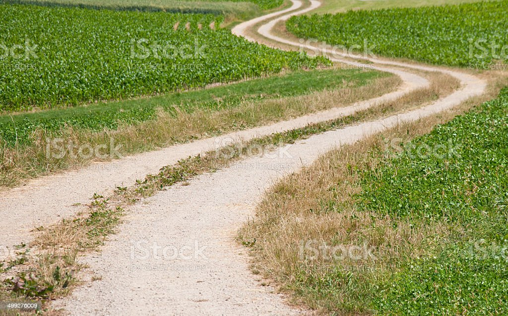 hike path through fields stock photo