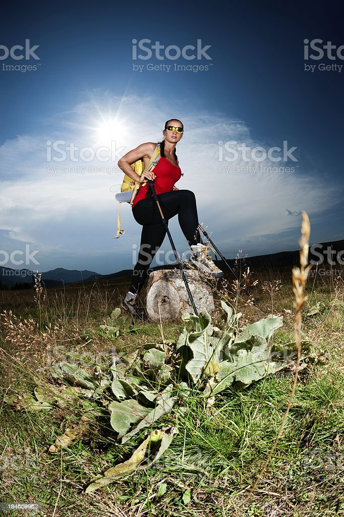 Hiker and a log royalty-free stock photo