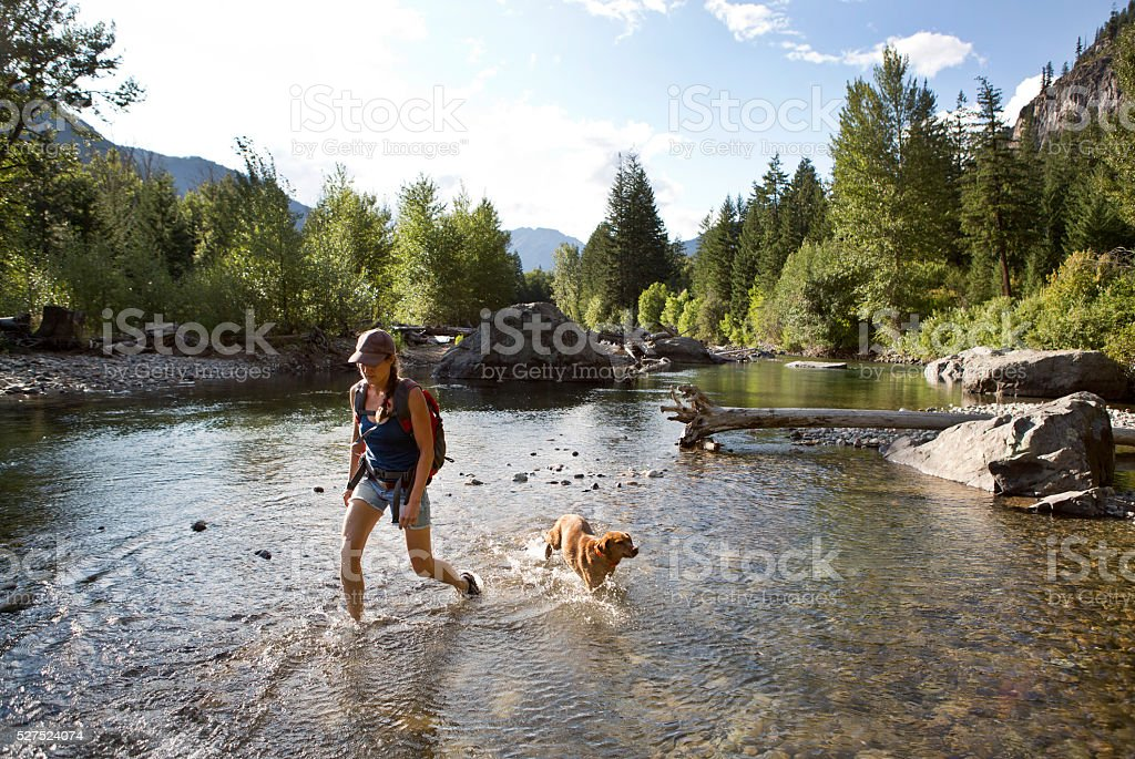 Hiker and Dog Crossing The Shallow Part of a River. stock photo