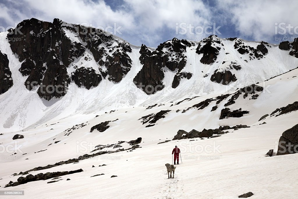 Hiker and dog in snowy mountains at spring stock photo