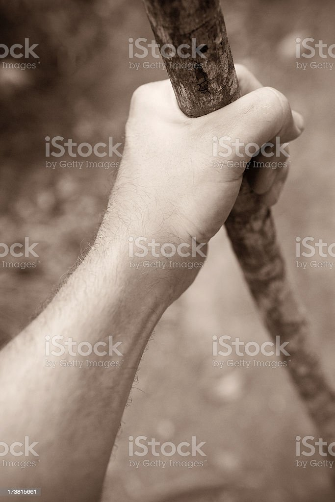 hiker and staff royalty-free stock photo
