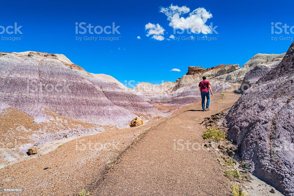 Hiker at Blue Mesa Trail Petrified Forest National Park Arizona stock photo