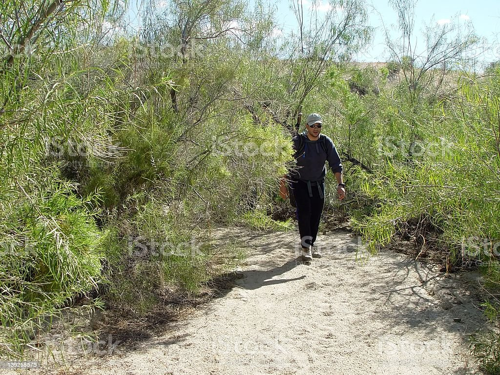 Hiker at steady pace stock photo