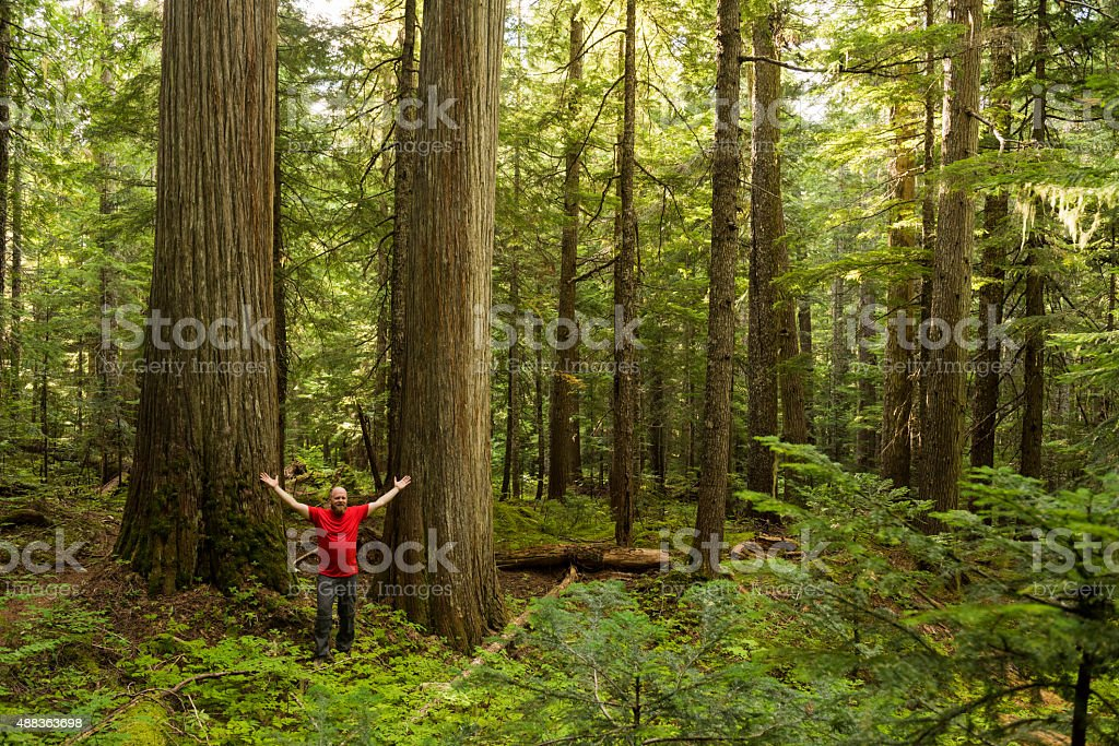 Hiker enjoying the sheer beauty of nature stock photo
