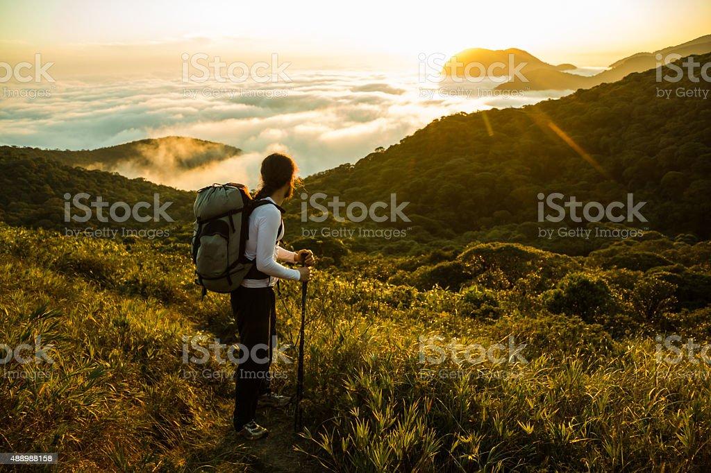 Hiker enjoying the Sunset and Rain Forest stock photo