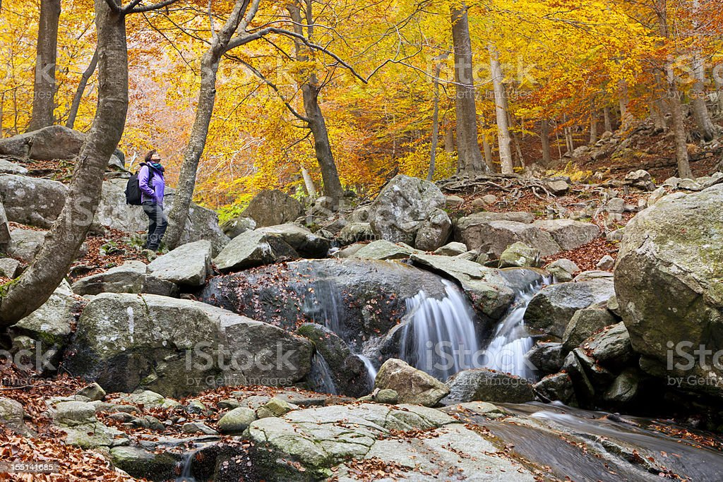 Hiker enjoying views in autumn forest stock photo