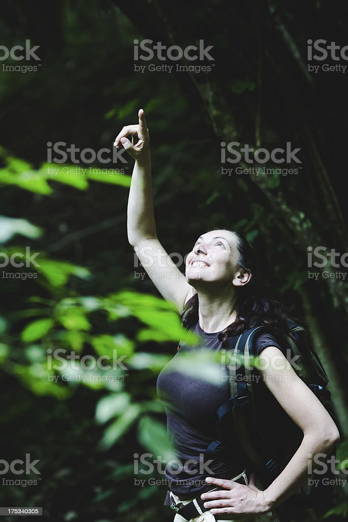 hiker in a Forest royalty-free stock photo